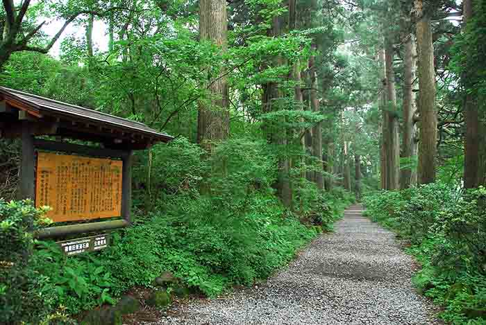 Tokaido trail in Japan