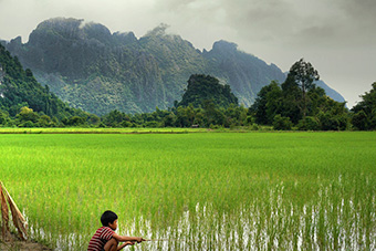 Boy looking rice field in remote Laos