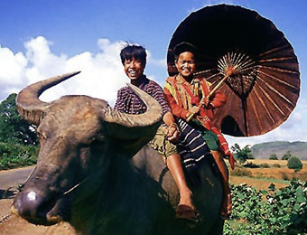 Hill tribe couple on water buffalo near Kalaw, Myanmar