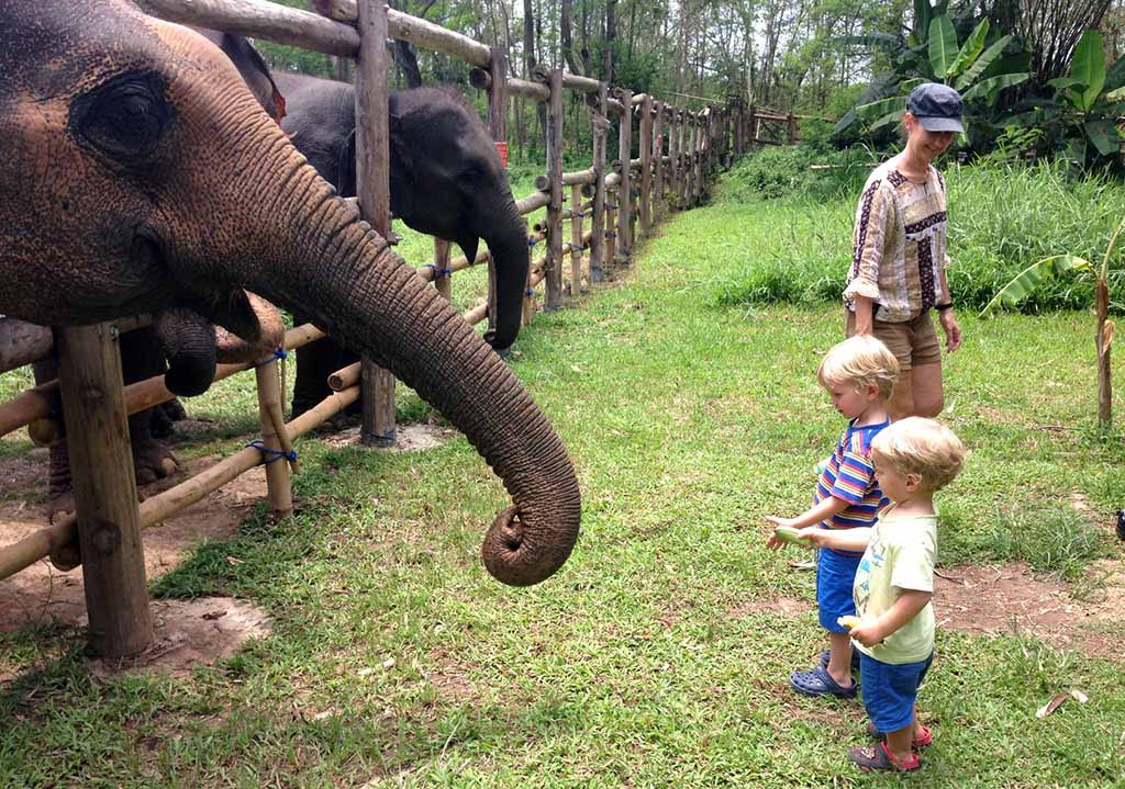Family elephant camp visit in Thailand
