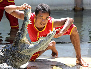 Bangkok Crocodile Farm