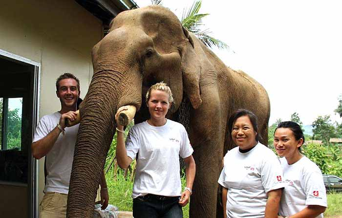 Teens volunteering at elephant camp in Thailand
