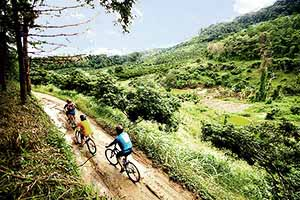 Mountain biking tour in Chiang Mai