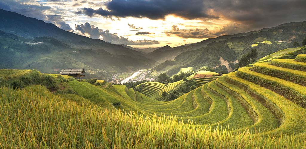 Terraced rice fields and mountain vistas in Sapa, Vietnam