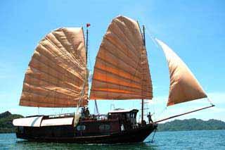Tropical Sails