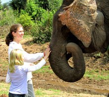 Laos Elephant Camp visitors